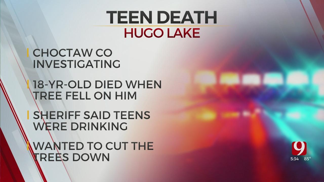 Fallen Tree Kills Teen At Hugo Lake