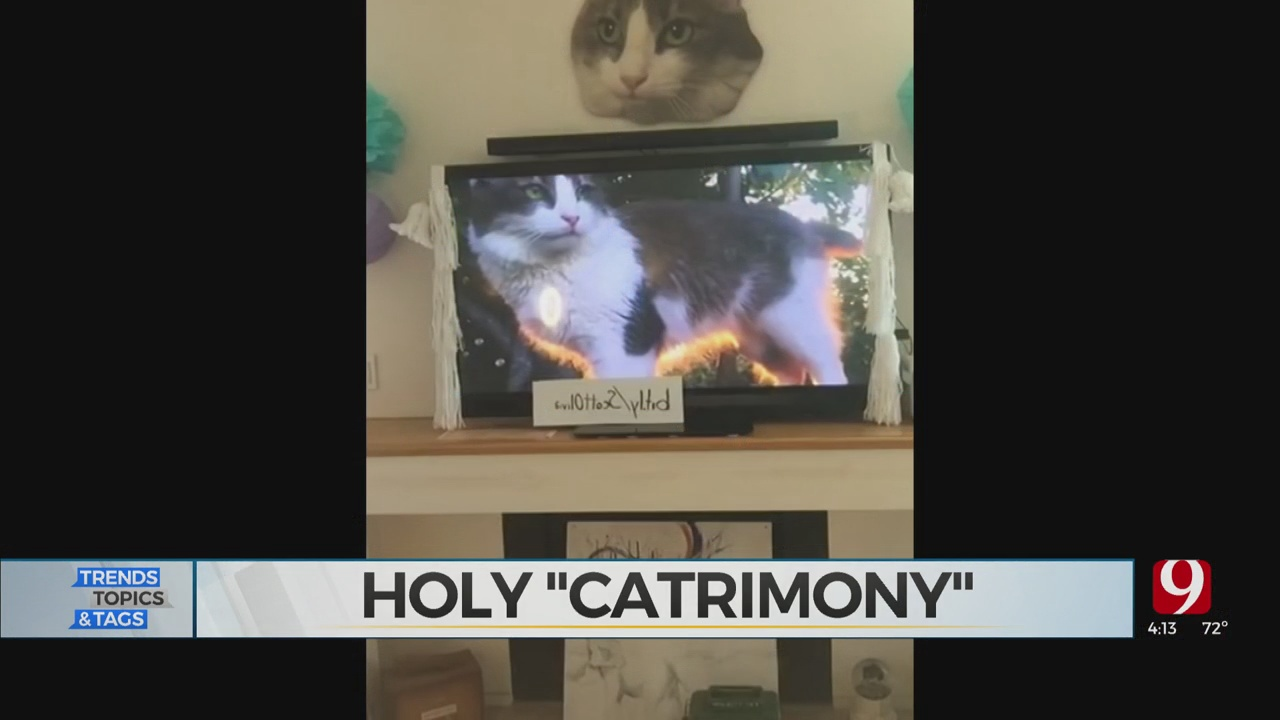Trends, Topics & Tags: Holy 'Cat-rimony'