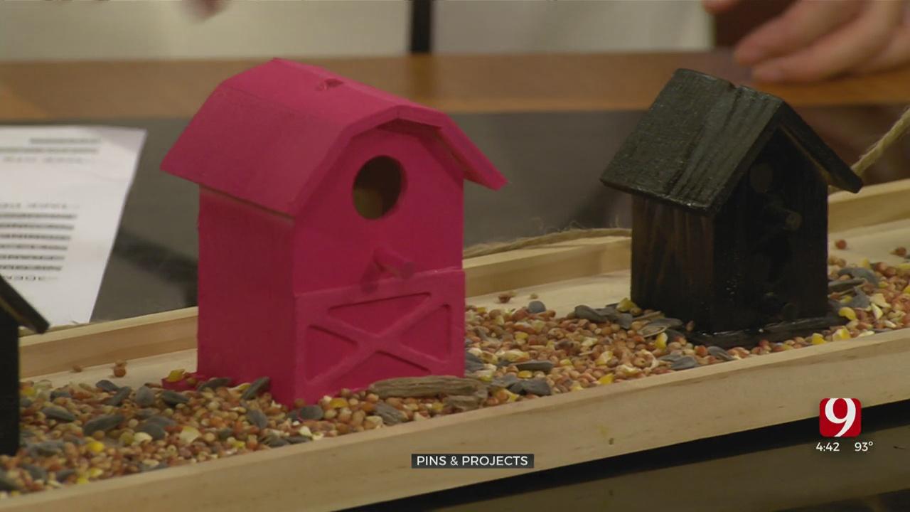 Pins & Projects: DIY Bird Feeders