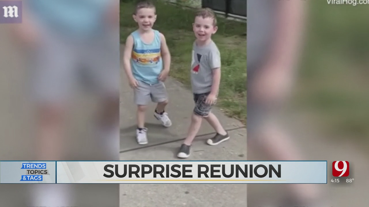 3-Year-Old Best Friends Reunite After Months Of Separation Due To COVID