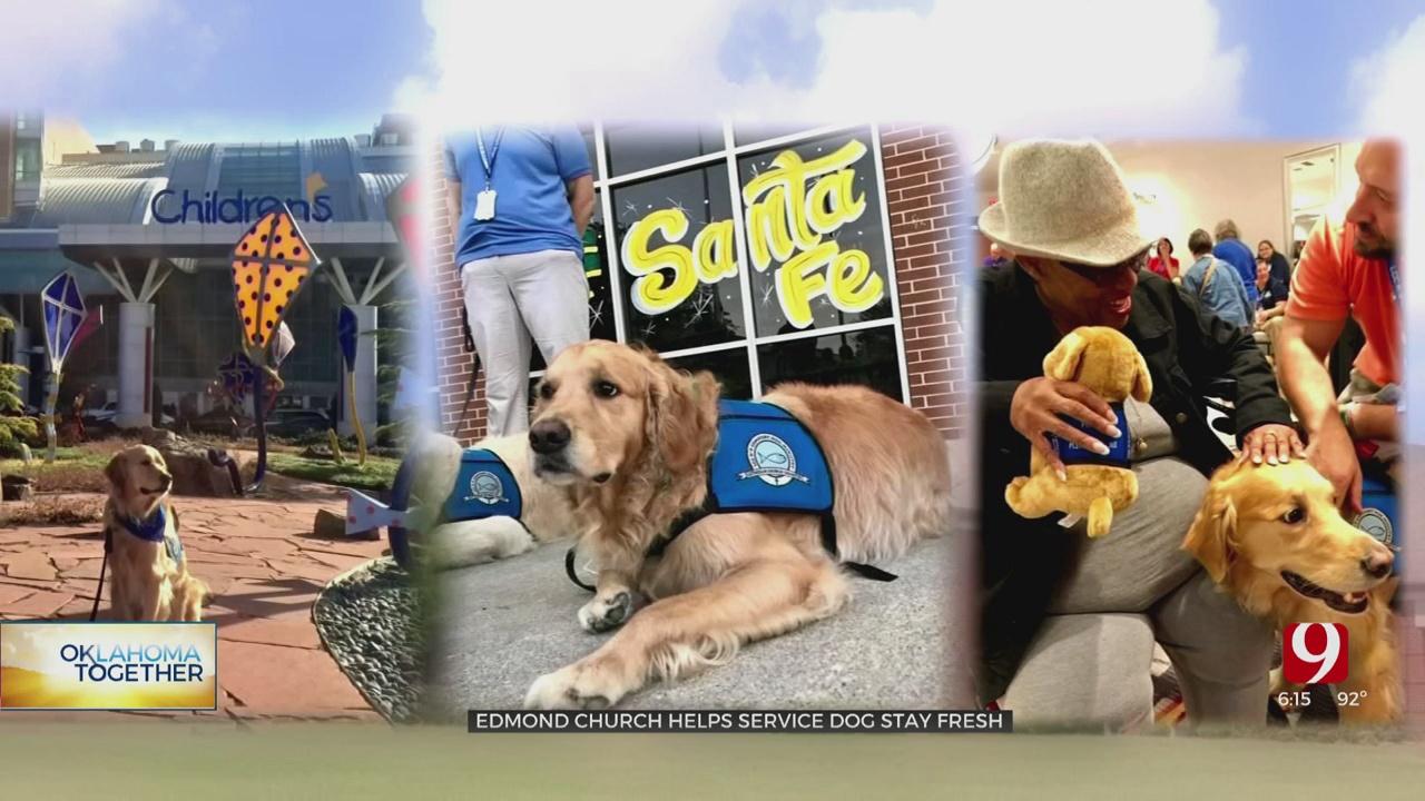 Edmond Comfort Dog Keeps Skills Sharp During COVID-19 Pandemic