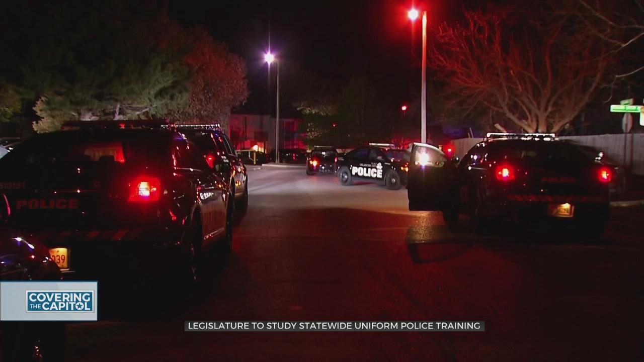 Legislature To Study Statewide Uniform Police Training