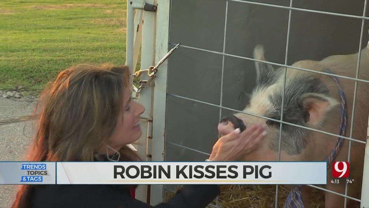 Trends, Topics & Tags: Robin Marsh Kisses The Pig!