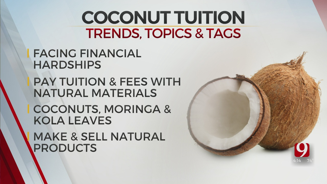 Trends, Topics & Tags: Coconut Tuition