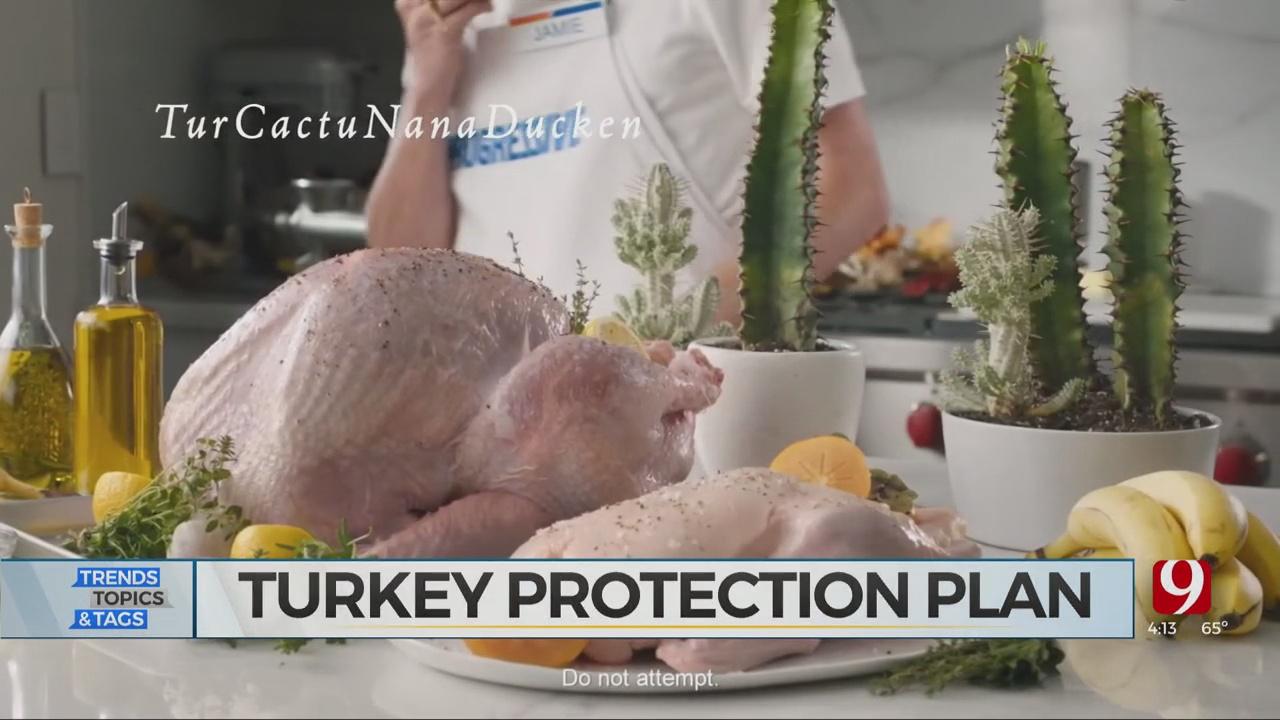 Trends, Topics & Tags: Turkey Insurance