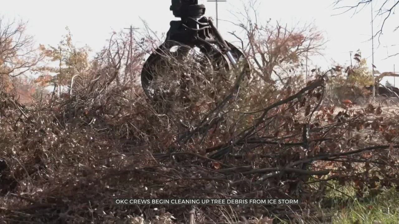 OKC Crews Begin Cleaning Up Tree Debris From October's Ice Storm