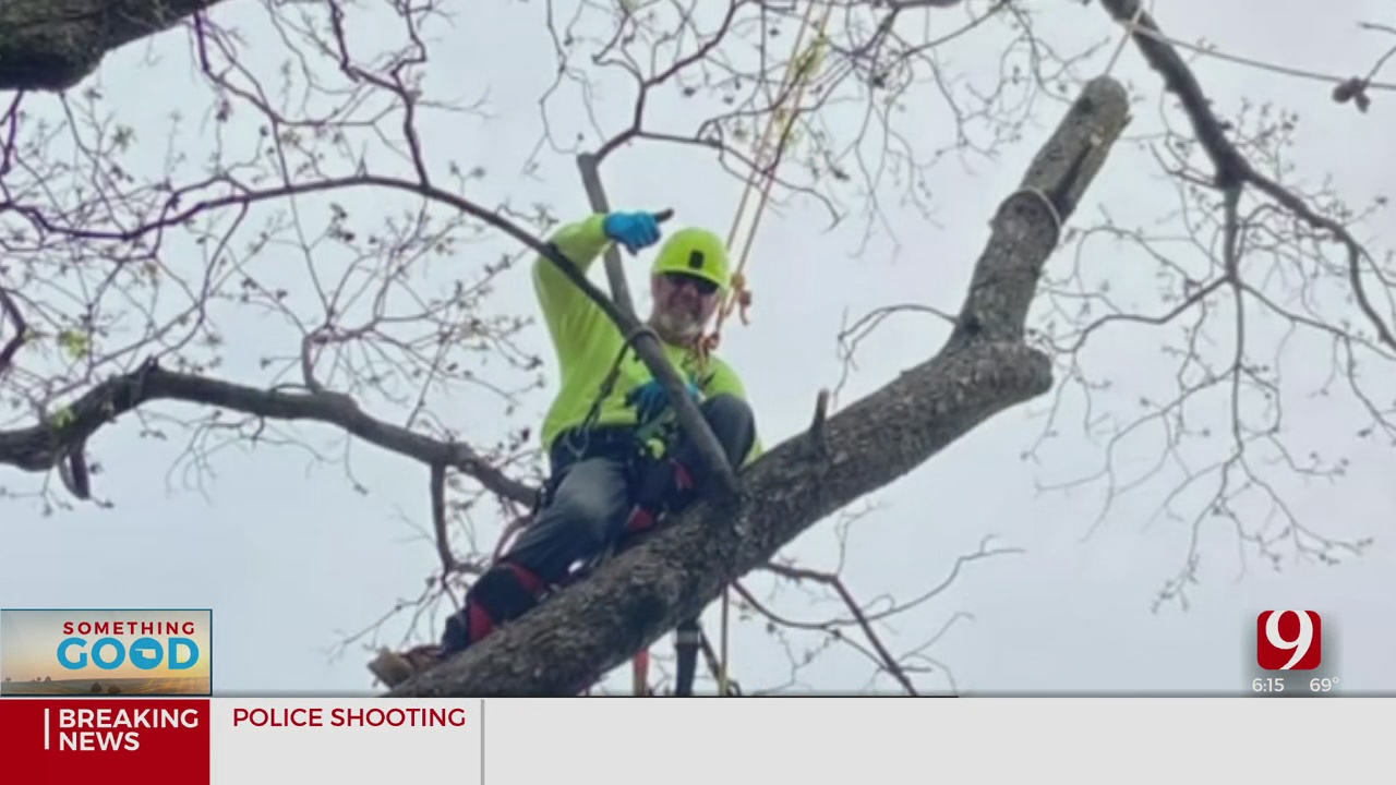 Something Good: Tree Service Company Rooted In Giving Back