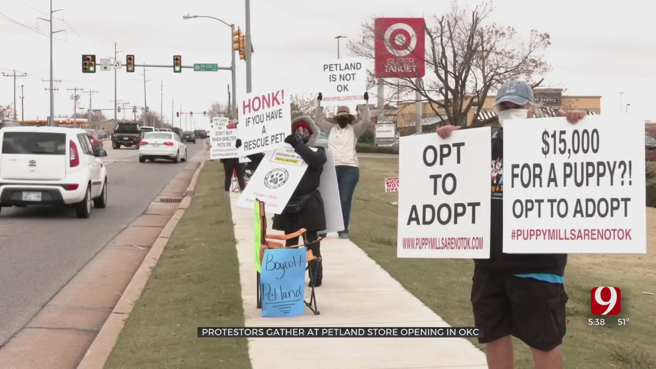 Animal Rights Activists Line Up Outside New NW OKC Pet Store