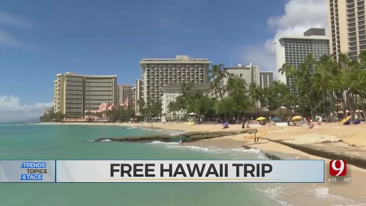 Trends, Topics & Tags: Free Hawaii Trip