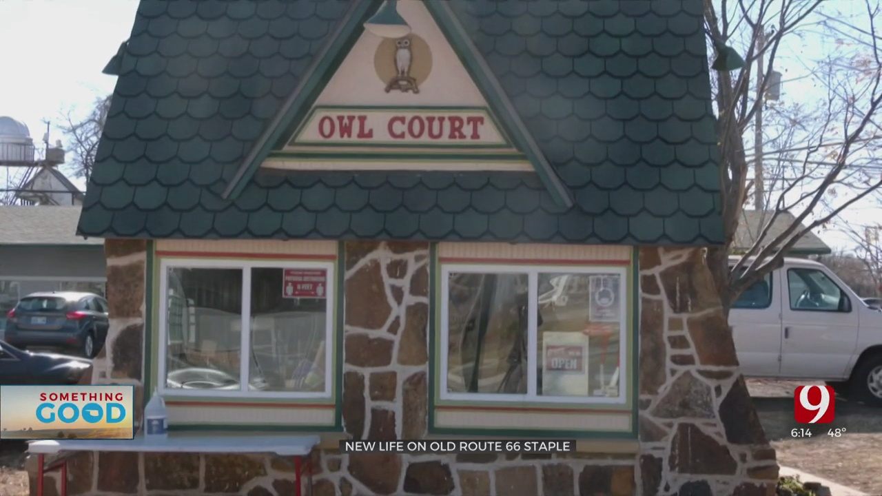 Route 66 Staple Owl Court Has Something Brewing