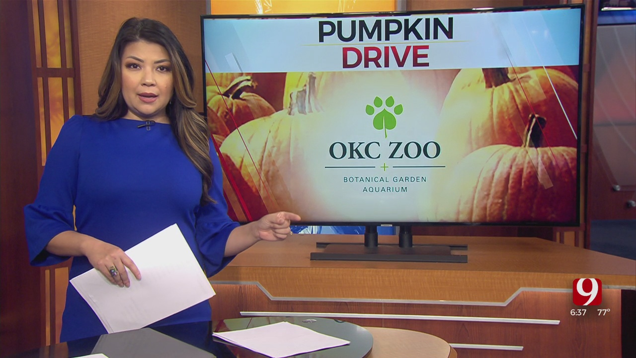 OKC Zoo's Annual Pumpkin Drive Offering Free Entry