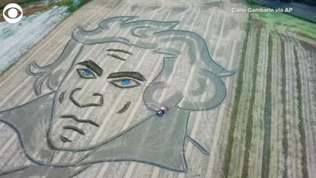 Watch: Portrait Of Beethoven Carved Into Field