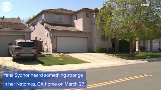 Woman calls police on home intruder, but it's just her robot vacuum