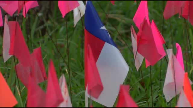 Texas Man Placed Flags On Lawn To Honor Those Lost To COVID-19