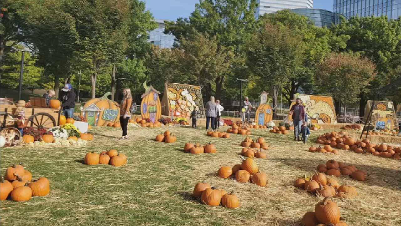 Myriad Gardens Begins The Great Pumpkin Patch Event