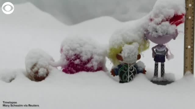 WATCH: Timelapse Video Shows Snowfall Being Measured By Troll Dolls