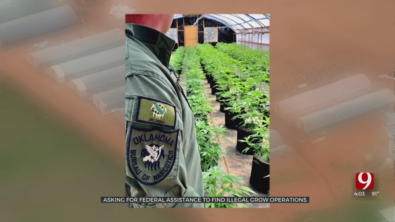 Oklahoma Seeks Millions In Federal Funds To Fight Problem Of Illegal Grow Operations