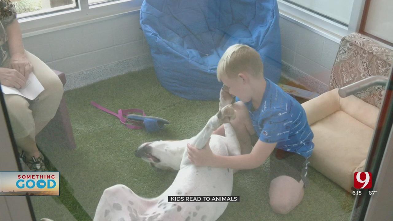 Edmond Animal Services Tests Kids Reading To Animal Program