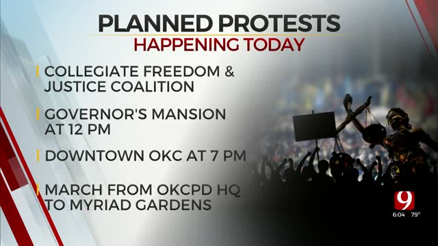 Protesters Against Police Brutality To Hold March