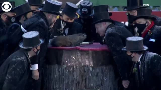 WATCH: Punxsutawney Phil Makes His Annual Appearance