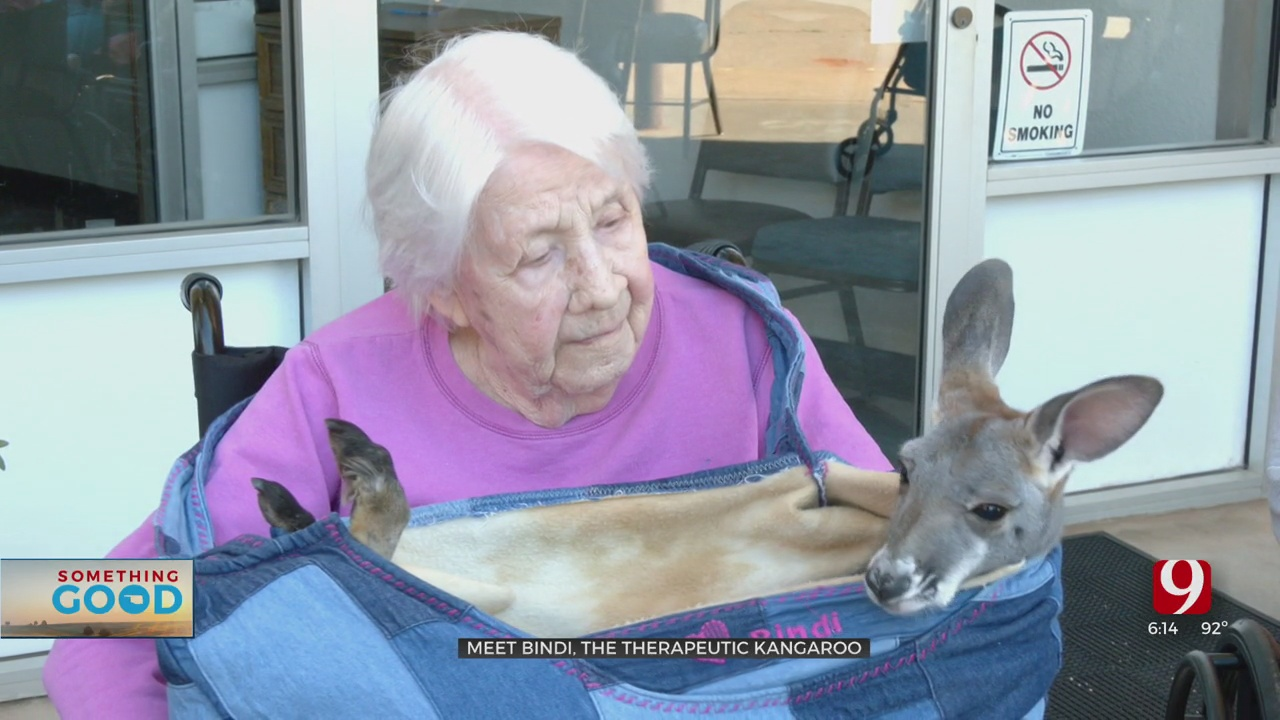 Therapeutic Kangaroo Helping Residents At Fairview Nursing Home