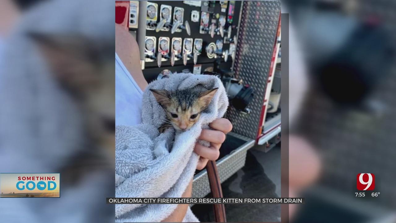 OKC Firefighters Rescue Kitten From Storm Drain