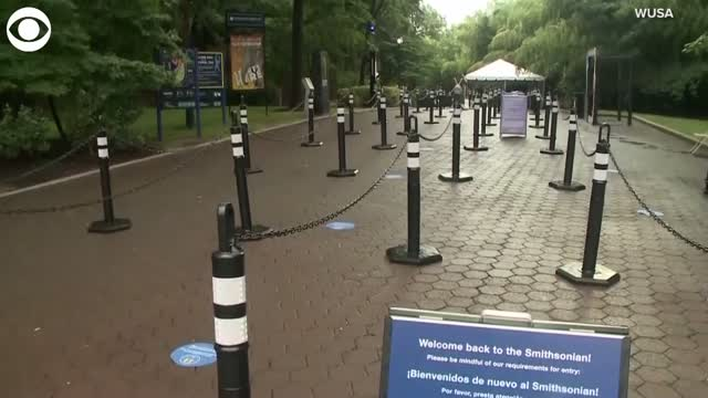 WATCH: Smithsonian's National Zoo Reopens