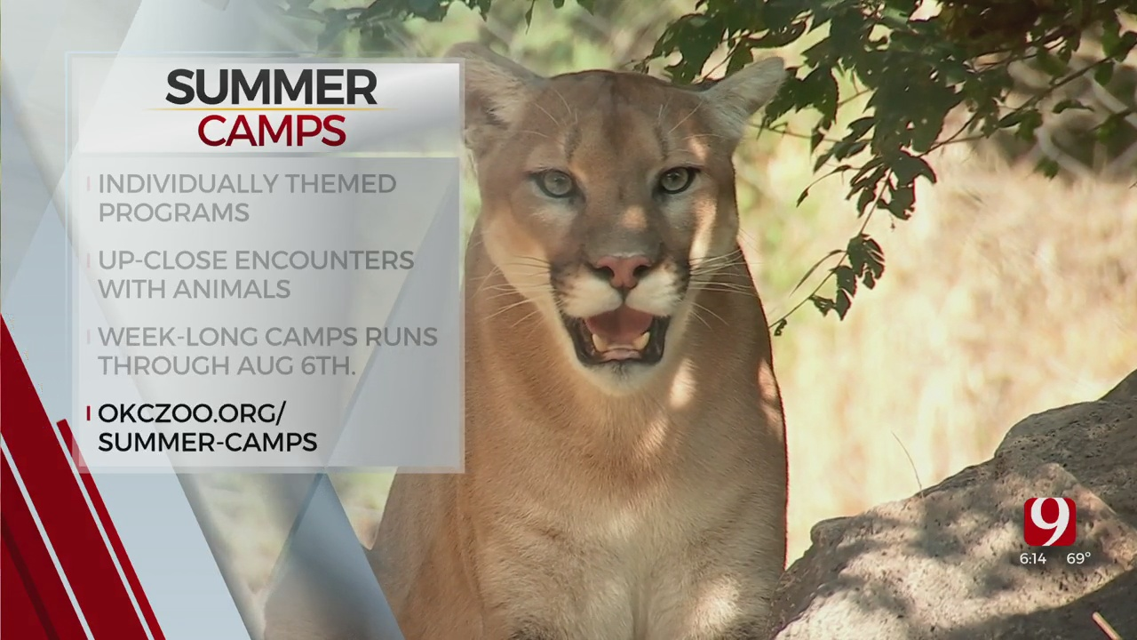 OKC Zoo Hosting Weekly Summer Camps
