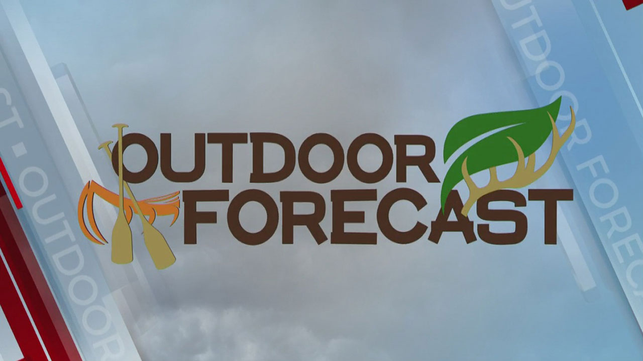 laCEY'S oUTDOOR fORECAST (624)