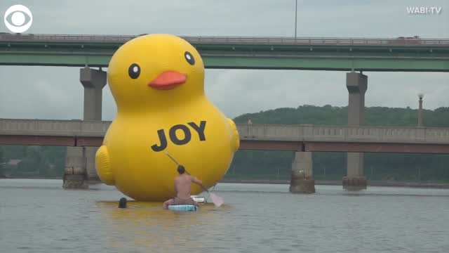 WATCH: Giant Rubber Duck Floats In Maine Harbor