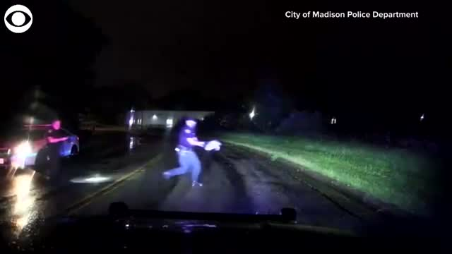 WATCH: Police Officers Rescue Snapping Turtle Trying To Cross A Road