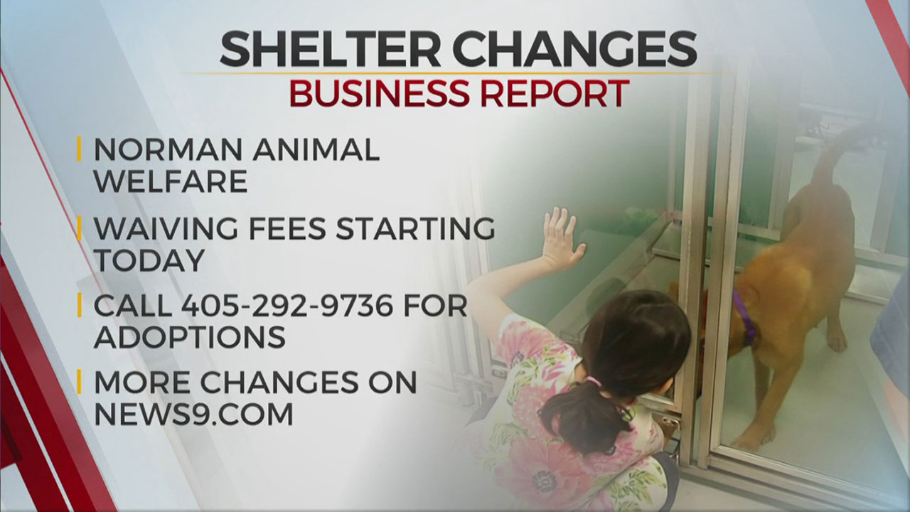 Norman Animal Welfare Adjusts Services Due to Rising COVID-19 Cases