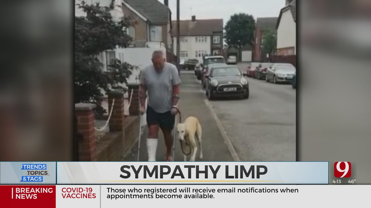Trends, Topics & Tags: Dog's Sympathy Limp