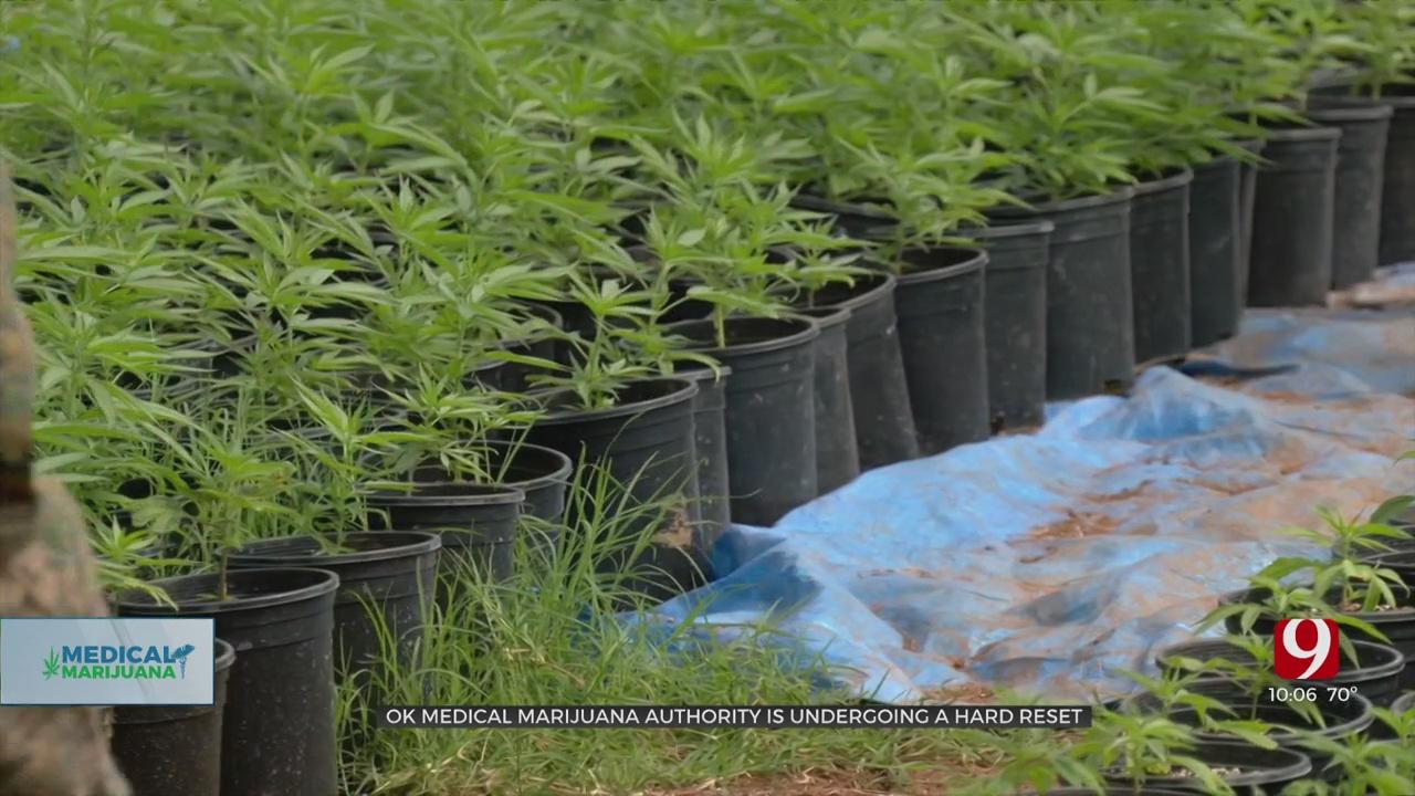 Oklahoma Medical Marijuana Authority Undergoing A 'Hard Reset,' New Director Says