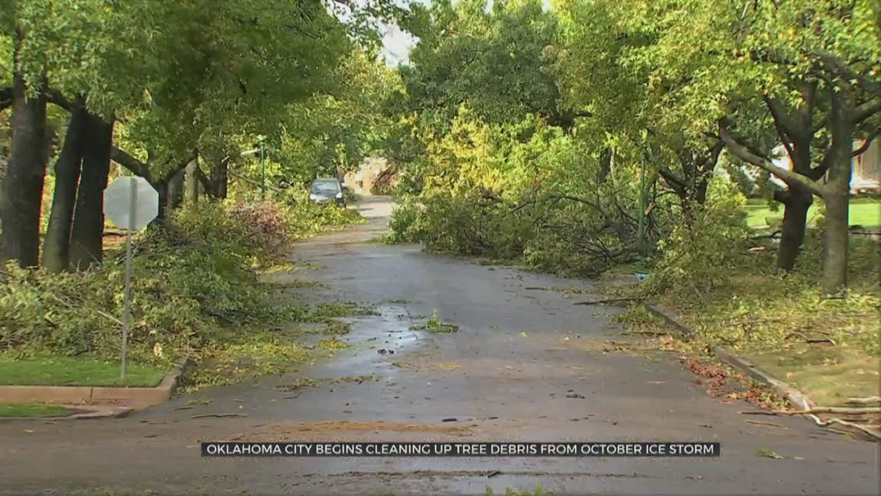 OKC Begins Cleaning Up Tree Debris From October Ice Storm