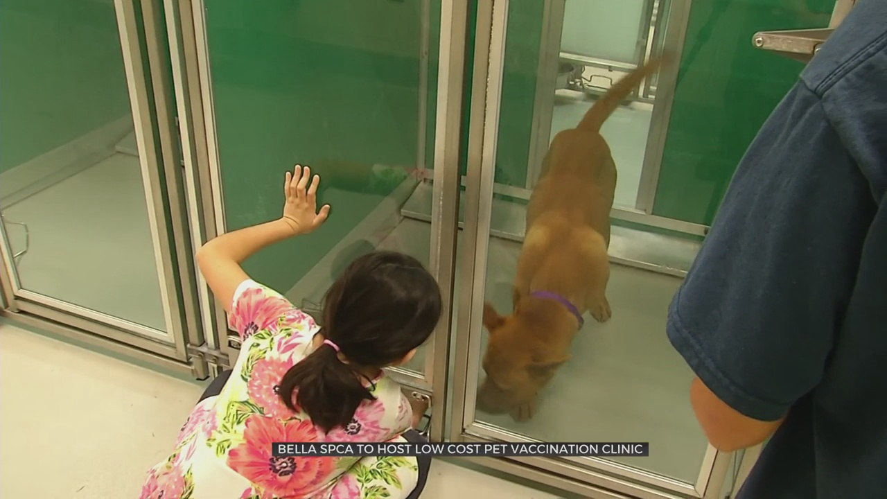 Bella SPCA to Host Low Cost Pet Vaccination Clinic