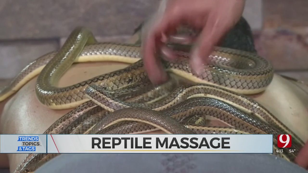 Trends, Topics & Tags: Snake Massage?