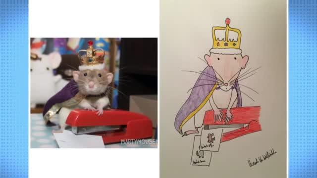 Doodling UK Dad Raises Cash, Smiles With A 'Bonkers' Pet Portrait Career