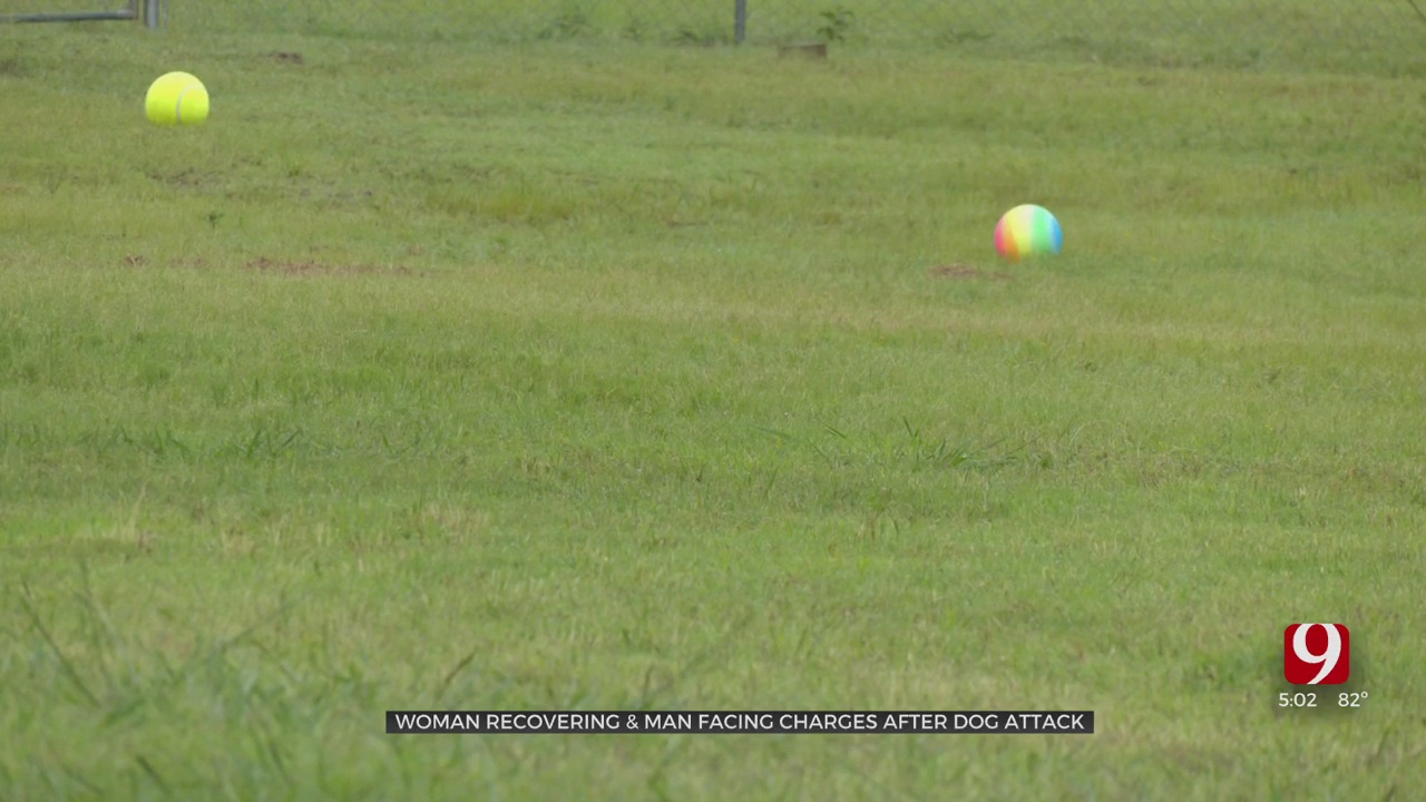 Man Facing Possible Charges After His Dog Allegedly Attacks Harrah Day Care Worker
