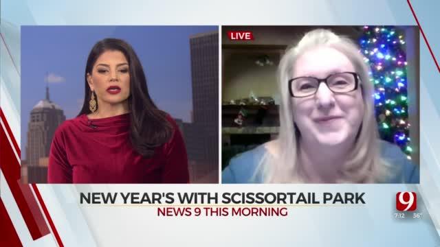 Scissortail Park To Host New Year's Eve Early Bird Celebration