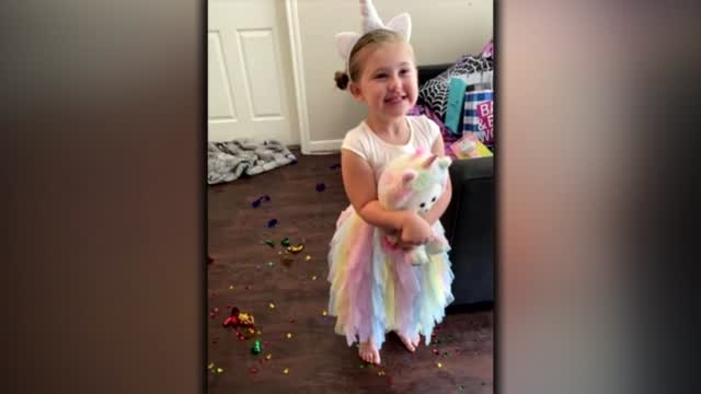 Family Says Their 4-Year-Old Daughter Was Killed By Distracted Driver