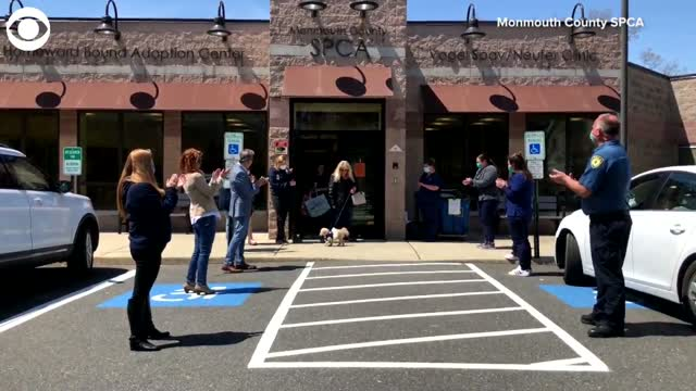 WATCH: Dog Gets Special Send-Off After Finding Forever Home