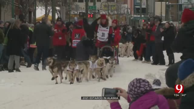 Pandemic Forces Route Change, Other Precautions For Iditarod