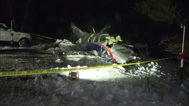 Snowmobilers Help Rescue 3 People, Dog From Plane Crash