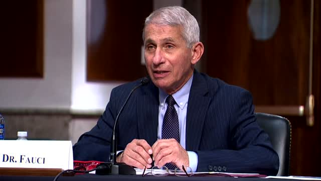 Dr. Fauci: 'If We Are Going To Contain This, We've Got To Contain This Together'