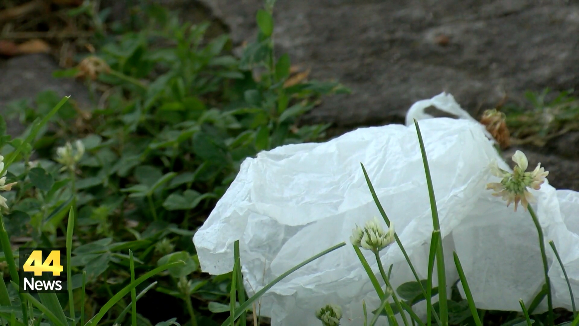 Image for Proposal Offered to Clean Up Henderson Neighborhoods