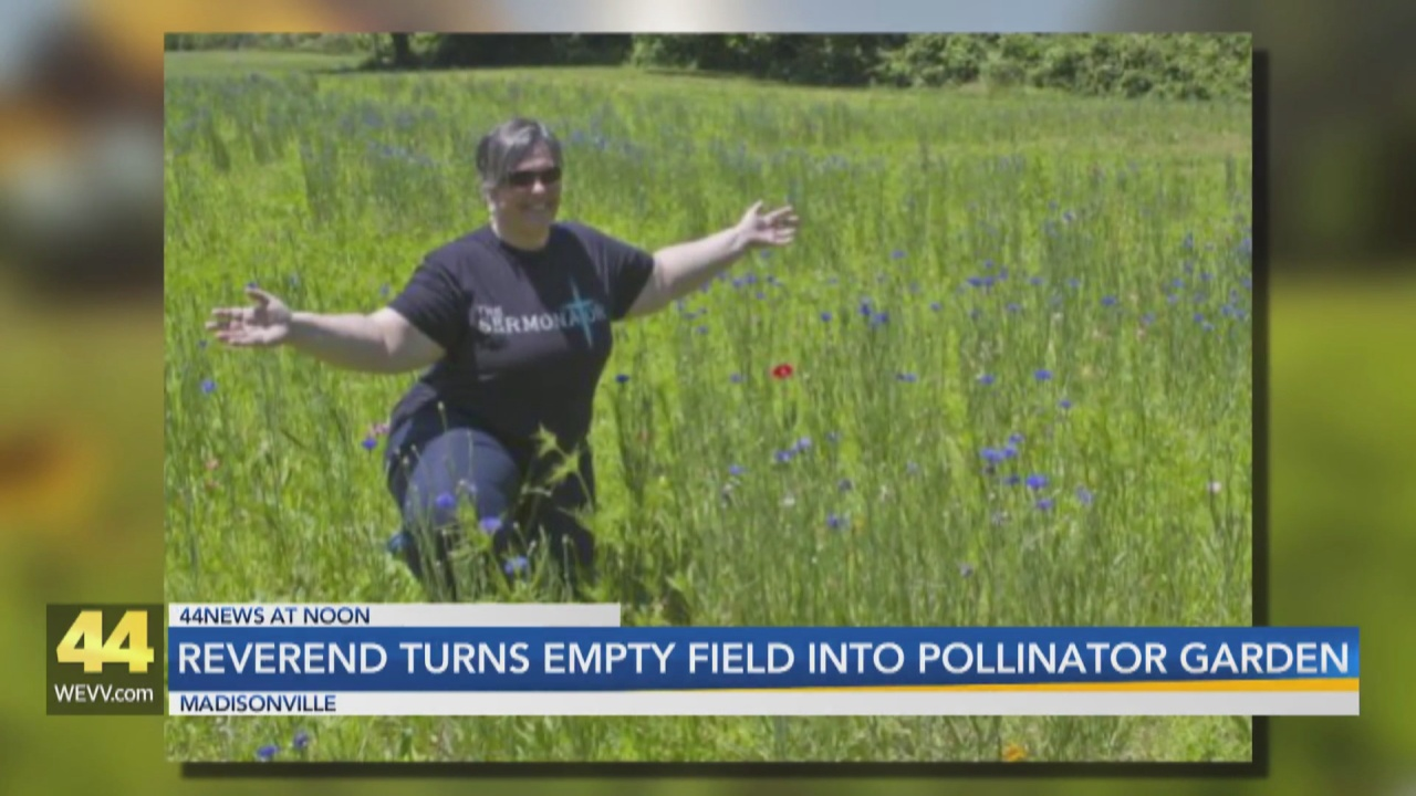 Image for Reverend Turns Empty Field Into Pollinator Garden