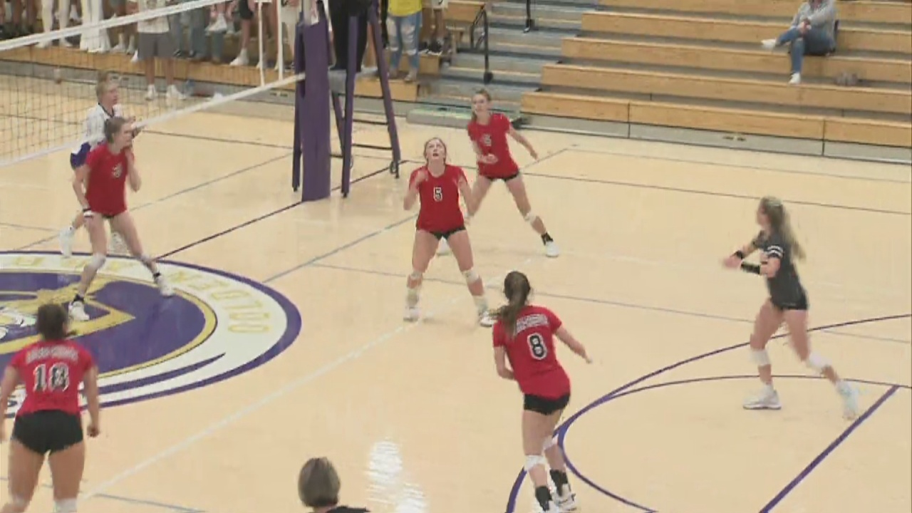 Image for Barr-Reeve volleyball beats Sullivan
